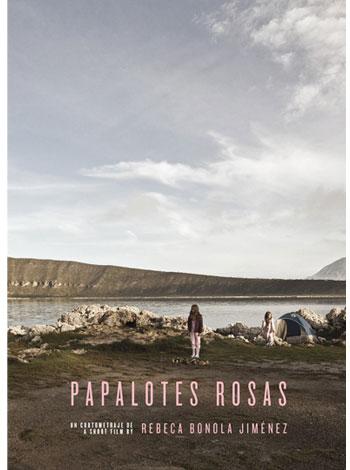 PAPALOTES ROSAS
